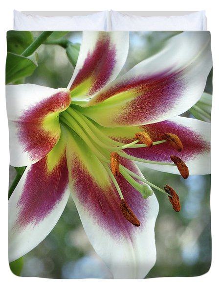 Oriental Lily In Summer Sunset Duvet Cover by Rebecca Overton