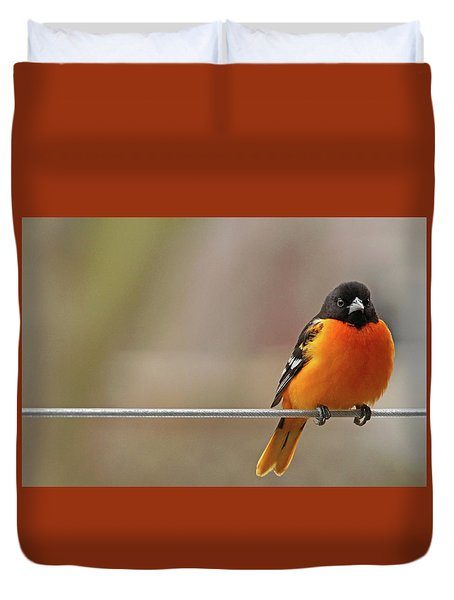 Oriole On The Line Duvet Cover