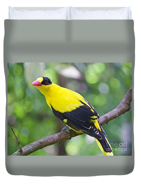 Oriole Wonder Duvet Cover by Judy Kay