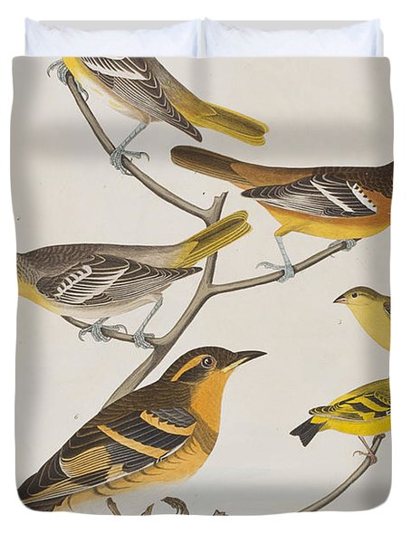 Orioles Thrushes And Goldfinches Duvet Cover by John James Audubon
