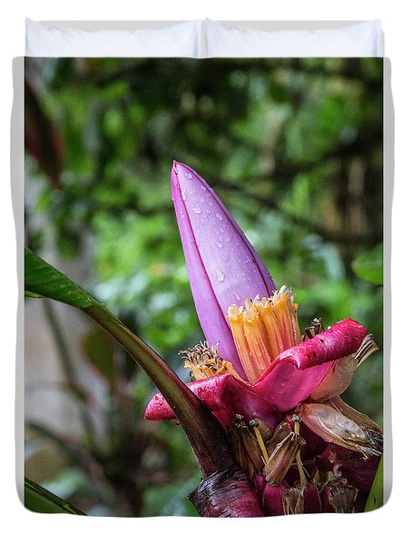 Ornamental Banana Flower Duvet Cover by Kathy McClure
