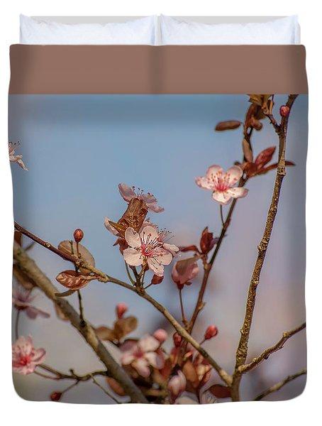Purple Leaf Sandcherry Blossoms Duvet Cover