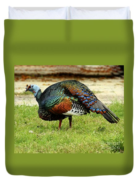 Oscillated Turkey Duvet Cover