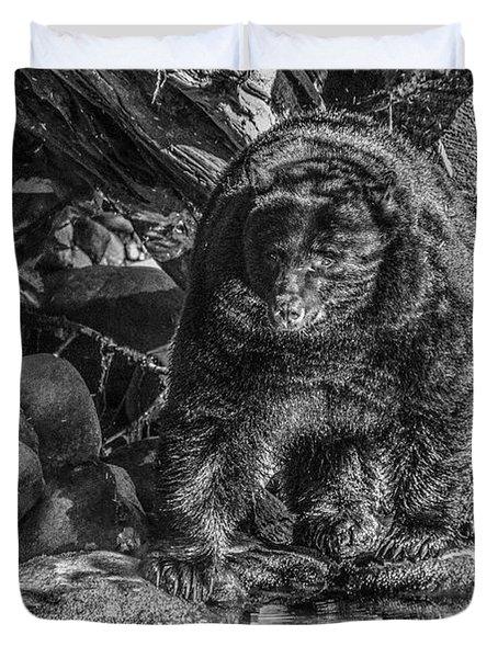 Oservant Black Bear  Duvet Cover