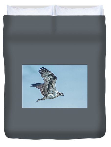 Ospery In Flight Duvet Cover