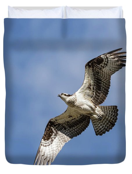 Duvet Cover featuring the photograph Osprey 2017-3 by Thomas Young