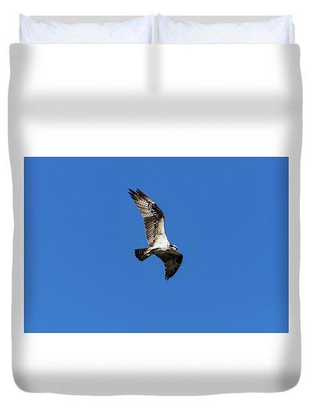 Osprey 5 Duvet Cover