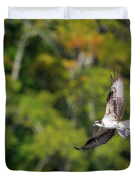 Osprey Duvet Cover by Bill Wakeley