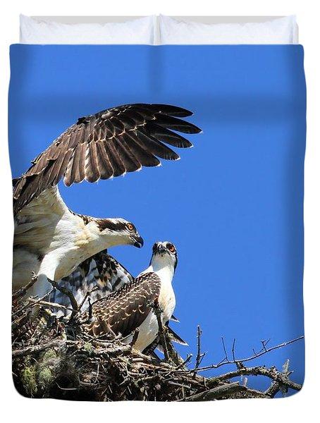 Osprey Chicks Ready To Fledge Duvet Cover