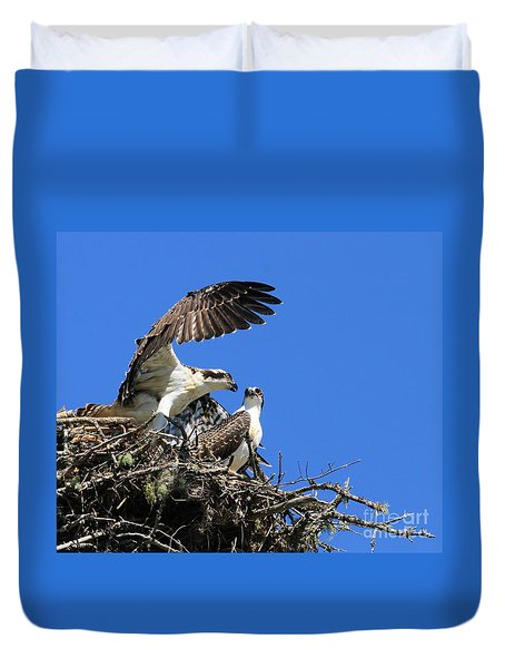Osprey Chicks Ready To Fledge Duvet Cover