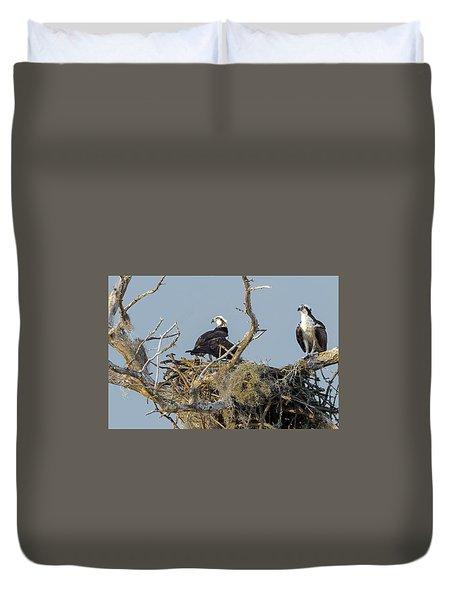 Osprey Family Duvet Cover