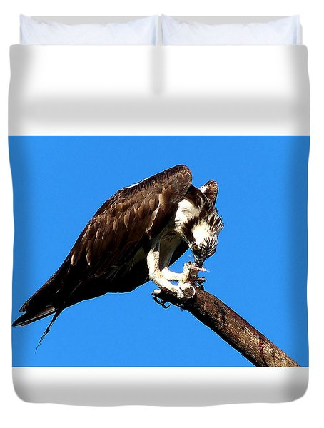 Duvet Cover featuring the photograph Osprey Feeding 004  by Chris Mercer