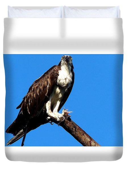 Duvet Cover featuring the photograph Osprey Feeding 005 by Chris Mercer