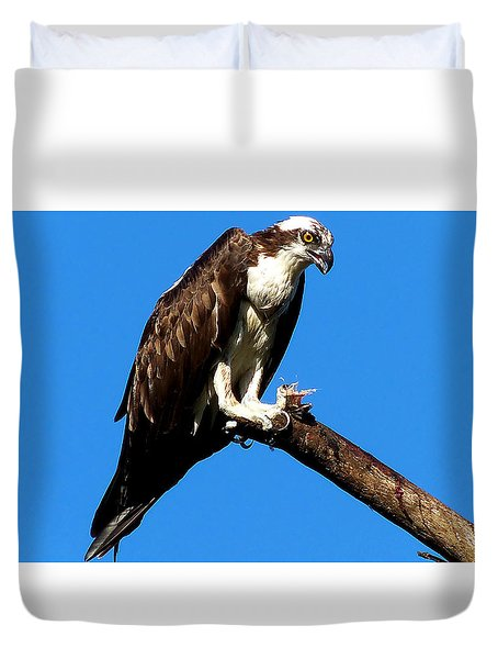 Duvet Cover featuring the photograph Osprey Feeding 006 by Chris Mercer