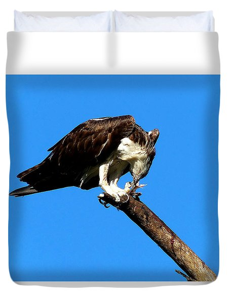 Duvet Cover featuring the photograph Osprey Feeding 007 by Chris Mercer