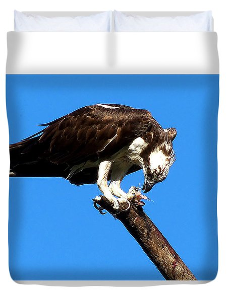 Osprey Feeding 008 Duvet Cover