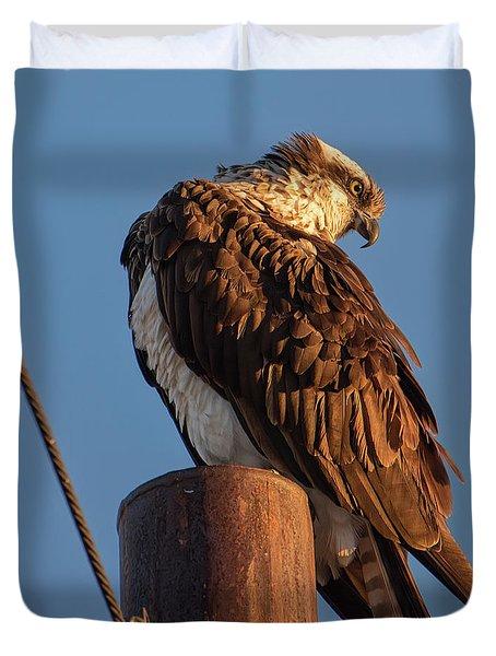 Osprey In The Desert Duvet Cover
