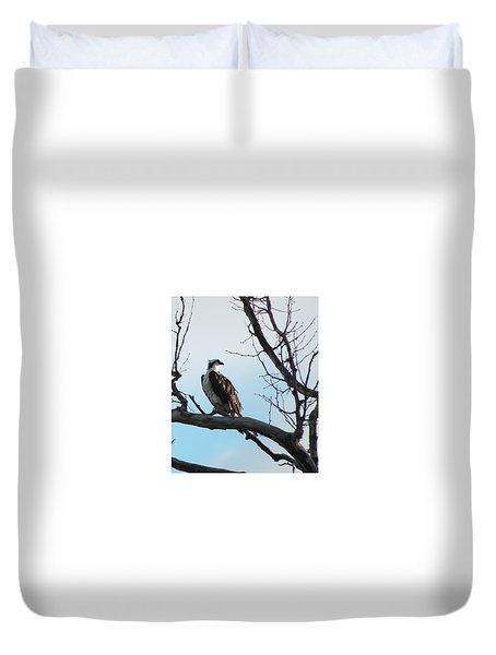 Osprey In Tree Duvet Cover