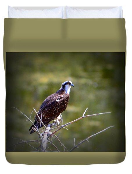 Osprey In Wait Duvet Cover