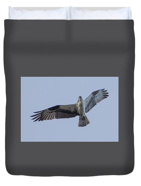 Osprey Duvet Cover by Keith Boone