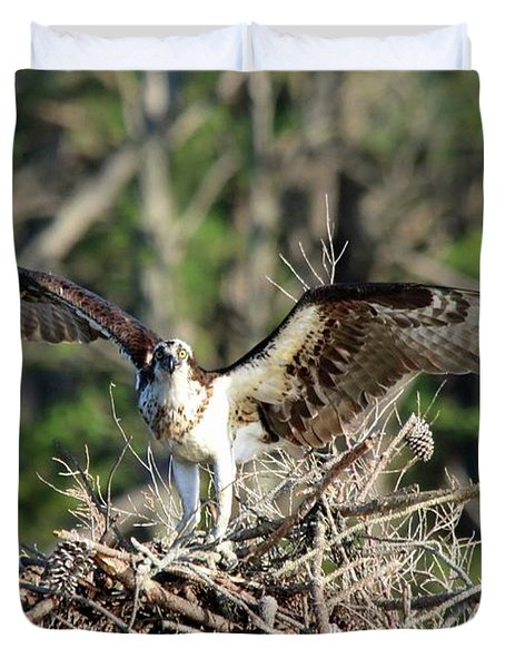 Osprey Nest Against Loblolly Duvet Cover