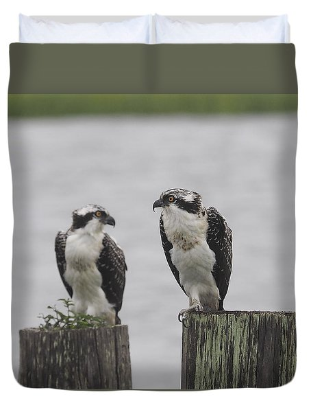 Osprey On Nj Shore 2014 Duvet Cover
