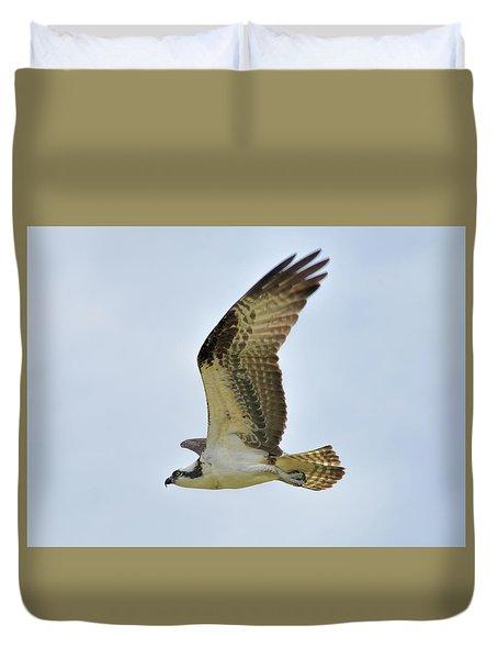 Osprey Upswing Duvet Cover