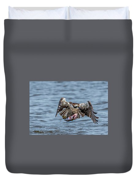 Osprey With Catch 9108 Duvet Cover