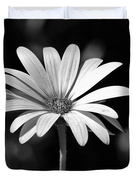 Osteospermum  Duvet Cover