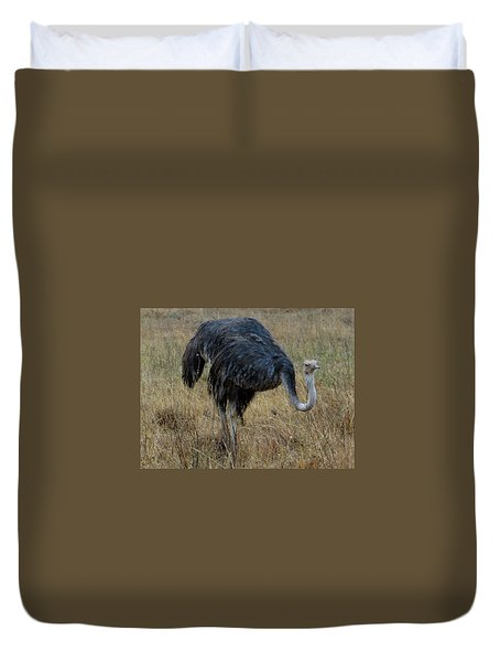 Ostrich In The Grass 1 Duvet Cover