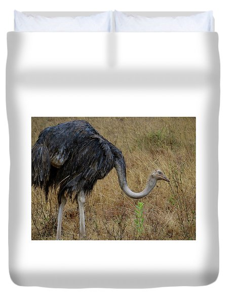 Ostrich In The Grass 2 Duvet Cover
