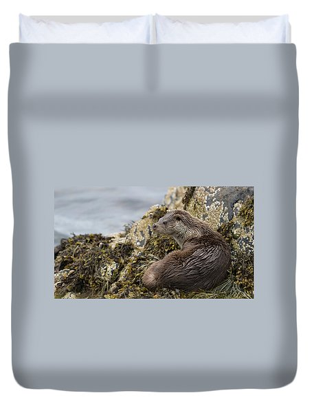 Otter Relaxing On Rocks Duvet Cover