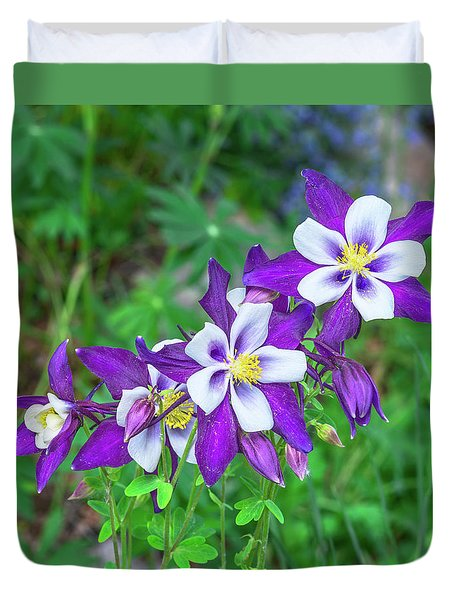 Our Gorgeous State Flower, Colorado Columbine  Duvet Cover