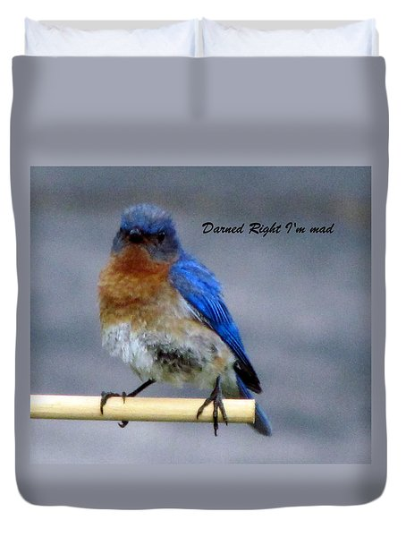 Our Own Mad Blue Bird Duvet Cover by Betty Pieper