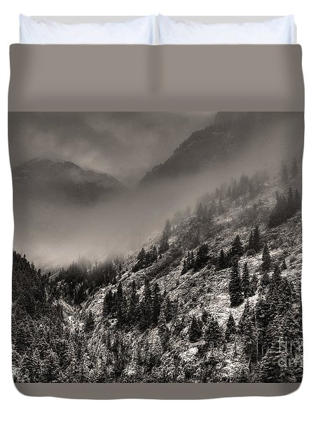 Ouray In Chinese Brush IIi Duvet Cover
