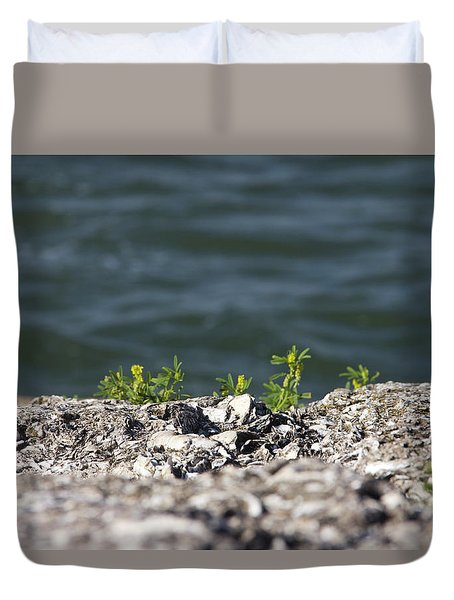 Out Of The Stone Duvet Cover