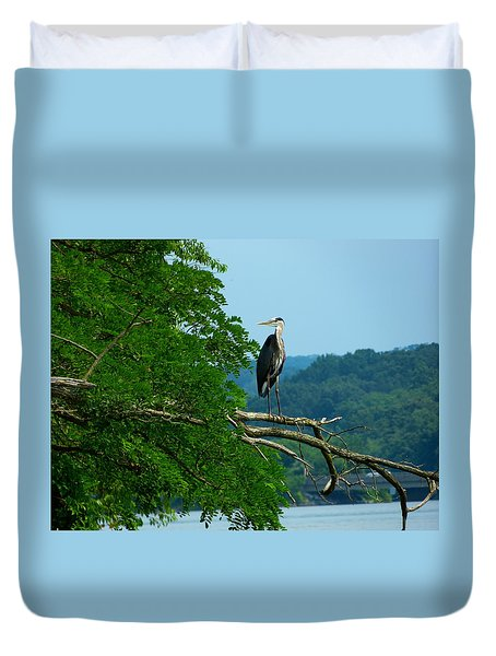 Out On A Limb Duvet Cover by Donald C Morgan