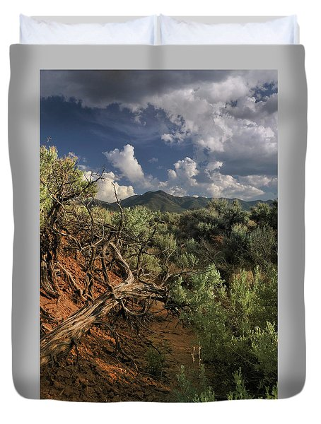 Out On The Mesa 2 Duvet Cover