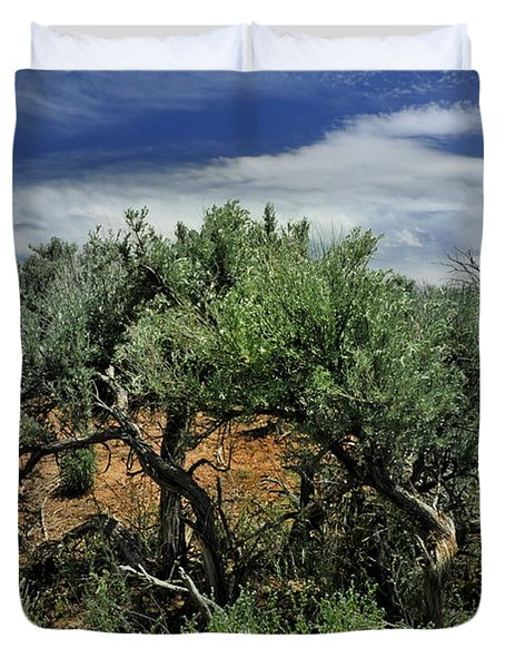 Out On The Mesa 3 Duvet Cover