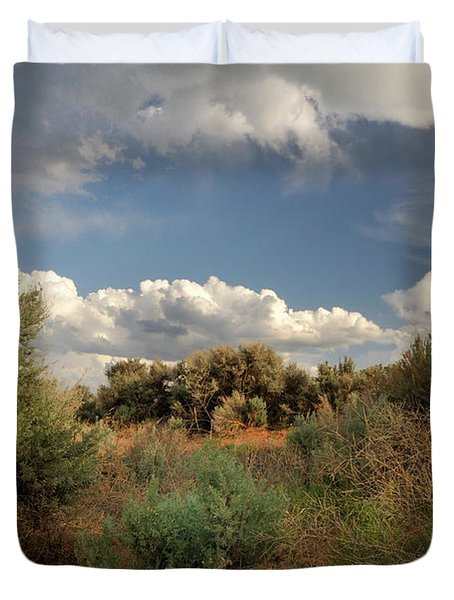 Duvet Cover featuring the photograph Out On The Mesa 4 by Ron Cline