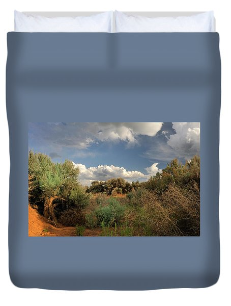 Out On The Mesa 4 Duvet Cover