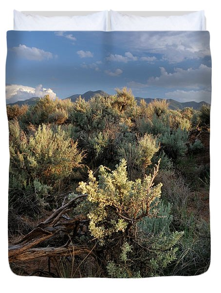 Duvet Cover featuring the photograph Out On The Mesa 7 by Ron Cline