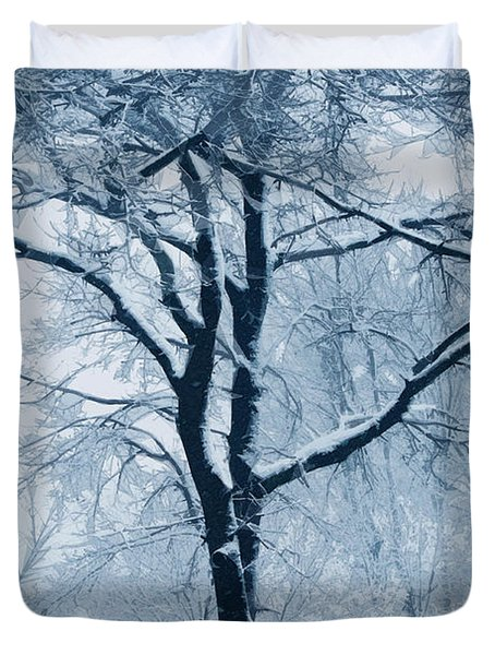 Outside My Window Duvet Cover by Linda Sannuti