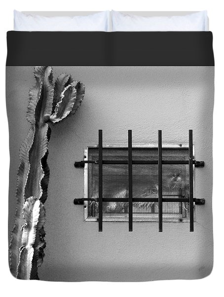 Outsiders - Cactus By The Window Duvet Cover by Ben and Raisa Gertsberg
