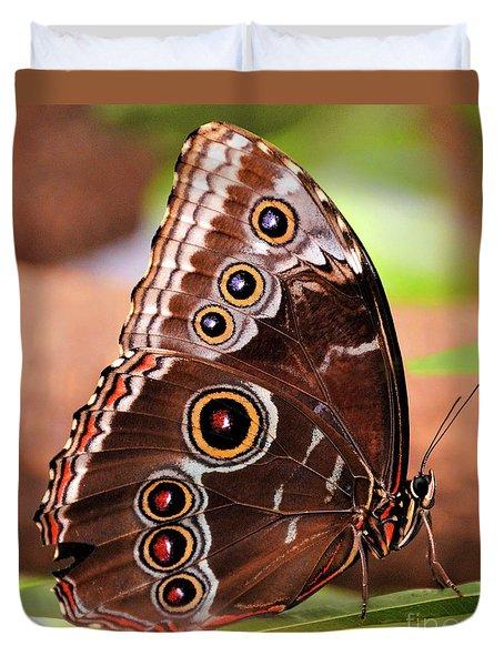 Owl Butterfly Portrait Duvet Cover