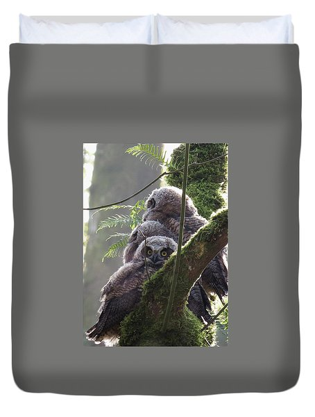 Owl Morning Duvet Cover