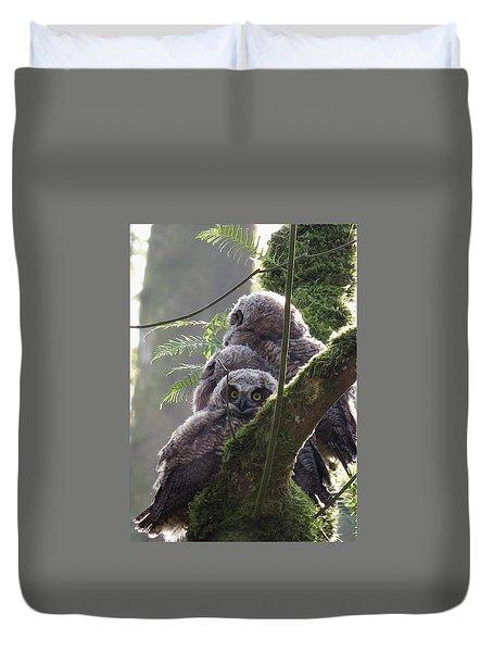 Owl Morning Duvet Cover by I'ina Van Lawick