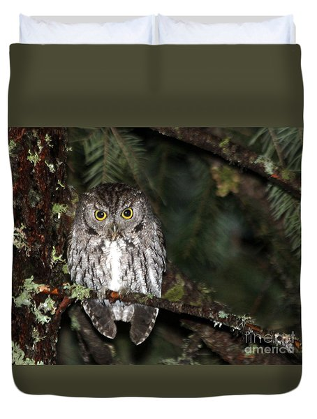 Owl Northern Pygmy  Duvet Cover