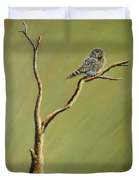 Owl On A Branch Duvet Cover