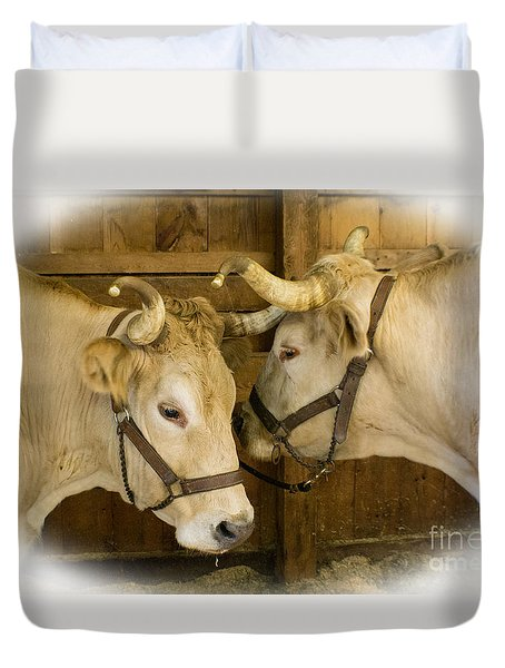 Oxen Team Duvet Cover